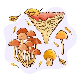 Illustrazione disegnata a mano di funghi di bosco. regali e raccolta dell'autunno. insieme variopinto del disegno dei funghi commestibili. schizzo di cibo disegnato. boletus giallo, finferli, champignon, russula