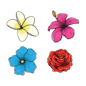 Illustrazione disegnata a mano del vettore tropicale del fiore