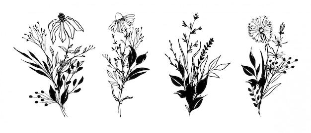 Set di composizioni floreali di inchiostro disegnato a mano