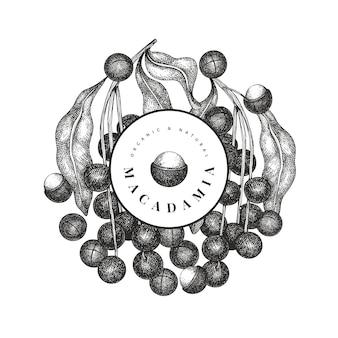 Ramo di macadamia disegnato a mano e design di noccioli