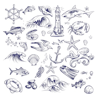 Insieme marino disegnato a mano seabu voyage faro squalo granchio polpo stella marina nodo granchio shell salvagente collezione Vettore Premium
