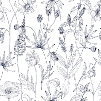 Modello senza cuciture floreale monocromatico disegnato a mano con splendidi fiori selvatici vintage, erbe e piante erbacee su priorità bassa bianca