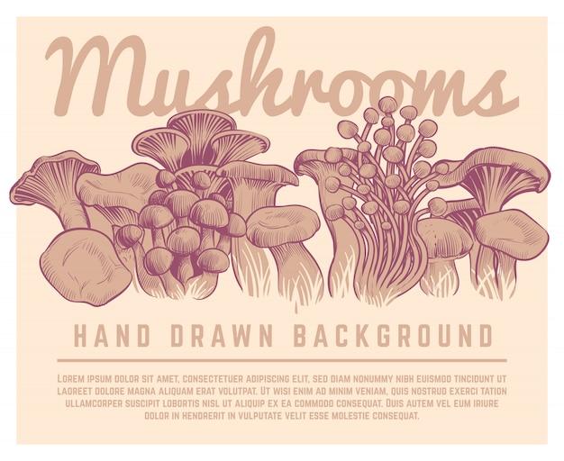 Sfondo di funghi disegnati a mano. illustrazione gastronomica di schizzo del fungo di ostrica del fungo prataiolo dei tartufi di autunno