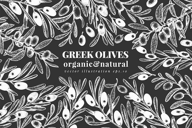 Oliva disegnata a mano illustrazioni di olive di vettore sul bordo di gesso. olio d'oliva vintage