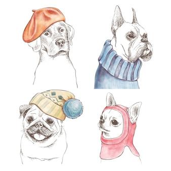 Insieme di contorni disegnati a mano di cani divertenti