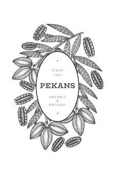 Modello di banner disegnato a mano ramo di noci pecan e kernel