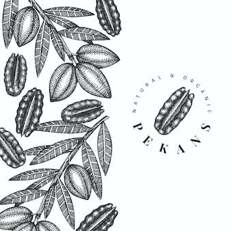 Modello di disegno di ramo e noccioli di noci pecan disegnati a mano. illustrazione di alimenti biologici su sfondo bianco. retro illustrazione del dado. immagine botanica in stile inciso.