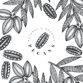 Disegnata a mano ramo di noci pecan e noccioli cornice sfondo