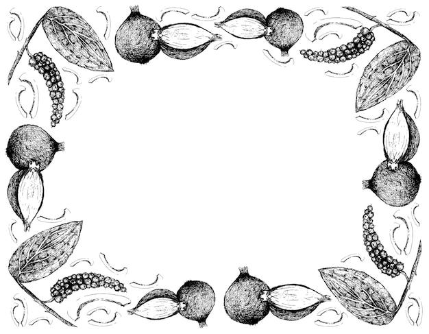 Disegnato a mano di pepe in grani con cornice di scalogni Vettore Premium