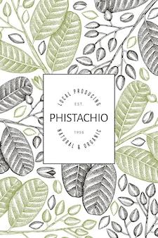 Modello di progettazione di rami e noccioli di pistacchio disegnato a mano. illustrazione vettoriale di alimenti biologici su sfondo bianco. illustrazione di dado retrò. banner botanico in stile inciso.