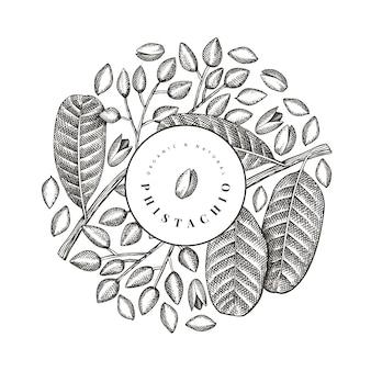 Modello di disegno di ramo e noccioli di phistachio disegnato a mano