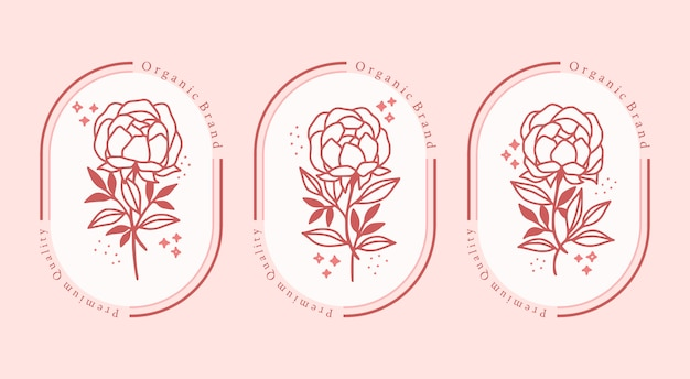 Elemento fiore di peonia botanica rosa disegnato a mano per il logo di bellezza femminile