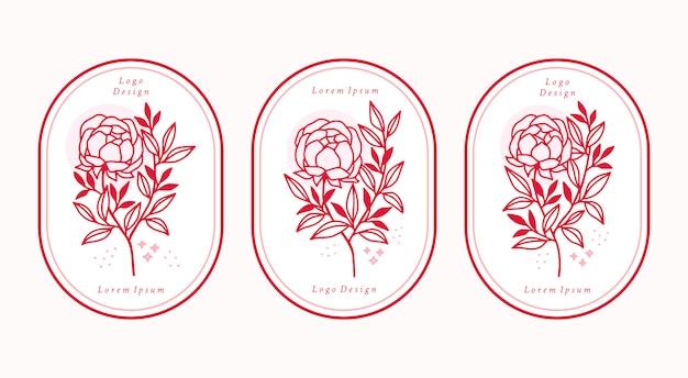 Insieme di elementi di fiori di peonia botanica rosa disegnata a mano per il logo di bellezza femminile