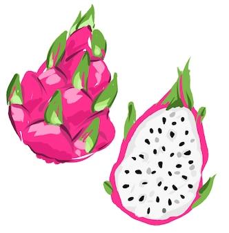 Frutta pitaya disegnata a mano, frutto del drago