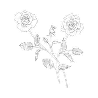 Illustrazione floreale rosa disegnata a mano