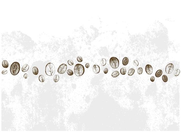 Fila disegnata a mano di chicchi di caffè diversi