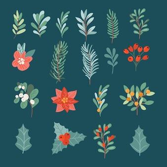 Insieme disegnato a mano di piante di natale
