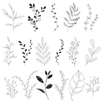 Disegnato a mano. set di fiori carini con rami e foglie naturali