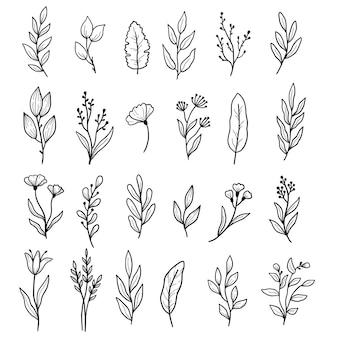 Insieme disegnato a mano di foglia floreale, fiore, elementi di ramo. stile di schizzo scarabocchio.