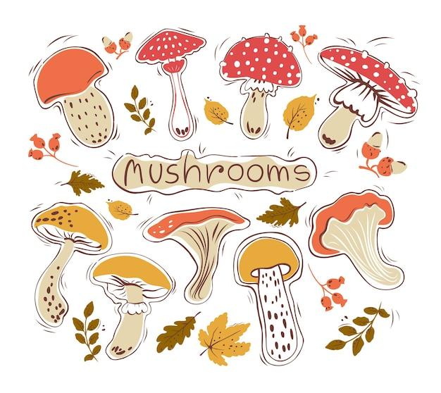 Insieme disegnato a mano di funghi e foglie. autunno. hygge. sfondo isolato.