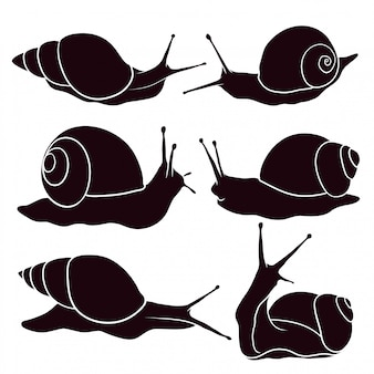 Sagoma disegnata a mano di lumaca