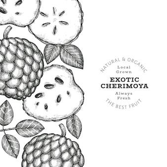 Banner di cherimoya stile schizzo disegnato a mano