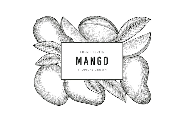 Etichetta di mango stile schizzo disegnato a mano. frutta fresca biologica. frutta di mango retrò retro