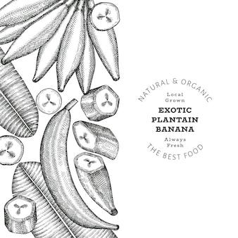 Banner di piantaggine stile schizzo disegnato a mano. illustrazione vettoriale di frutta fresca biologica. modello di disegno di frutta banana esotica retrò