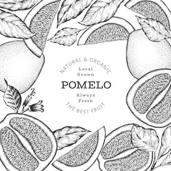 Banner di pomelo stile schizzo disegnato a mano. illustrazione di frutta fresca biologica. modello di frutta retrò