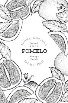 Pomelo stile schizzo disegnato a mano. illustrazione di frutta fresca biologica. modello di disegno di frutta retrò