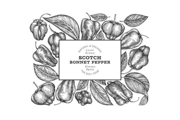 Insegna del pepe del cofano dello scotch di stile di schizzo disegnato a mano. illustrazione vettoriale di verdura fresca biologica. modello di design retrò pepe di caienna