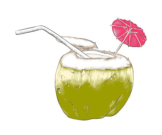 Schizzo disegnato a mano di cocktail di cocco estivo