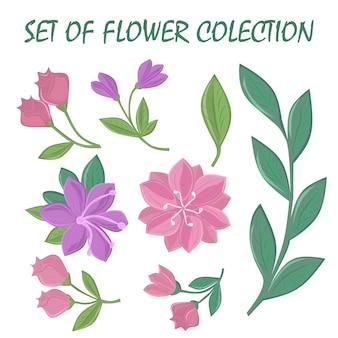 Collezione di fiori primaverili disegnati a mano isolati su sfondo bianco