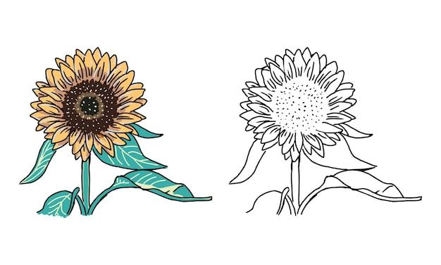 Pagina da colorare di girasole disegnata a mano per bambini