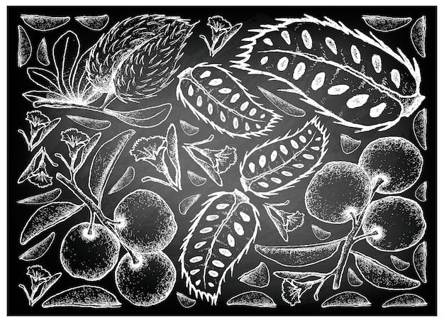 Disegnato a mano di segale prugna e soursop sulla lavagna