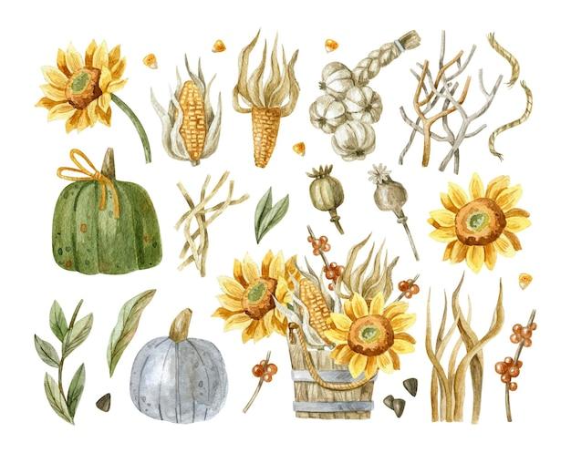 Insieme di elementi del ringraziamento disegnato a mano con girasoli, mais, zucche, semi di papavero, foglie di aglio