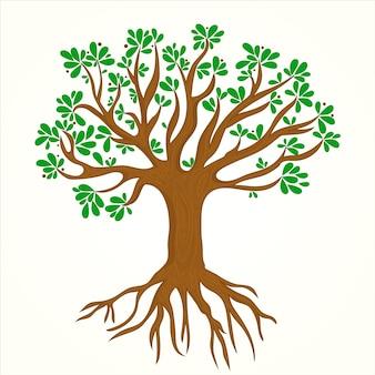 Illustrazione di vita dell'albero disegnato a mano