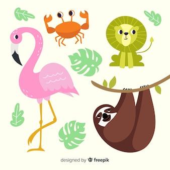 Collezione di animali tropicali disegnati a mano Vettore Premium