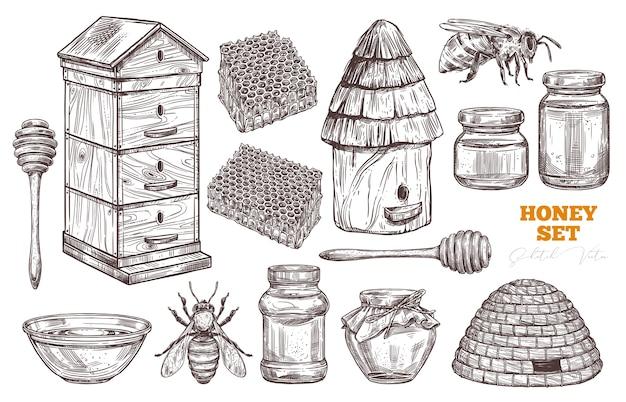 Insieme di miele di vettore disegnato a mano.