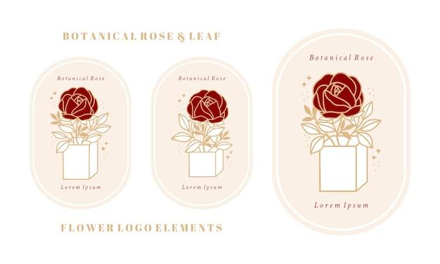 Pacchetto di scatola modello logo fiore di peonia rosa botanica vintage disegnato a mano e collezione di elementi di marca di bellezza femminile