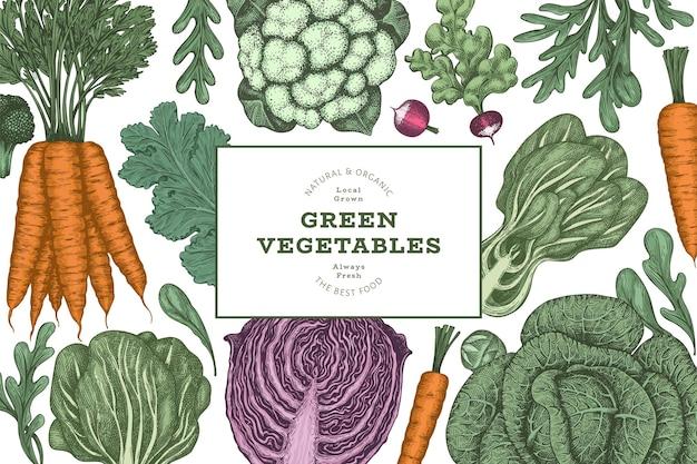 Disegno di verdure di colore vintage disegnato a mano