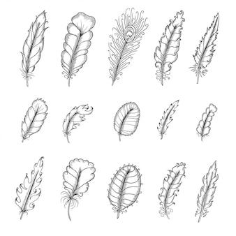 Set di piume vintage disegnati a mano. illustrazione grafica vettoriale di penna.