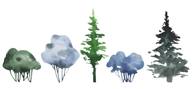 Insieme dell'acquerello di pini e arbusti cespuglio disegnato a mano dell'acquerello.