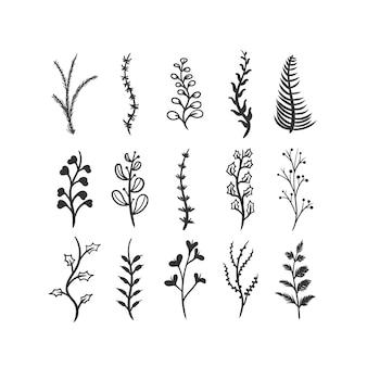 Foglie e rami invernali disegnati a mano. ramoscello floreale, ramo botanico con bacca e foglia doodle.