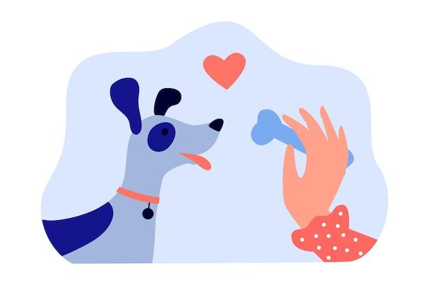 Mano del proprietario di un cane femmina che tiene l'osso per un cucciolo carino. donna che dà trattamento all'animale domestico che offre illustrazione vettoriale piatta. animali domestici, concetto di amore per banner, progettazione di siti web o pagina web di destinazione
