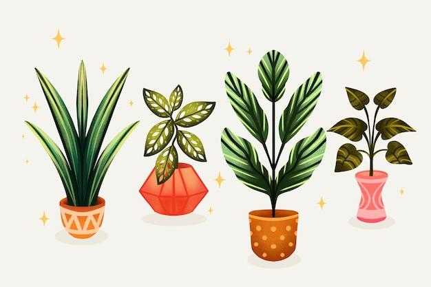 Collezione di piante d'appartamento dell'acquerello dipinto a mano