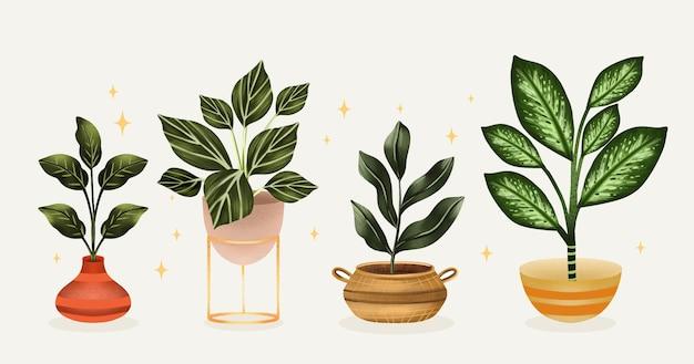 Set di piante d'appartamento dell'acquerello dipinto a mano