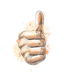 Mano che mostra il simbolo come. rendendo il pollice in alto gesto da una spruzzata di acquerello, schizzo disegnato a mano. illustrazione di vernici