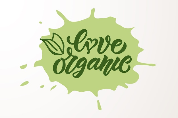 Distintivi ed etichette disegnati a mano con vegetariani vegani crudi eco bio naturali freschi senza glutine e senza ogm