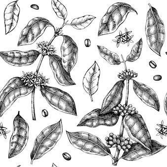 Modello senza cuciture della pianta del caffè disegnato a mano